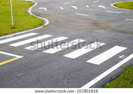 zebra way on the asphalt road surface