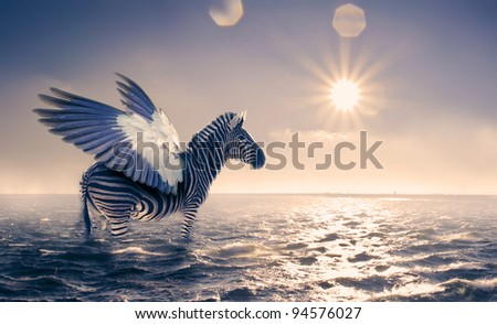 Stock Photo zebra with wings in the sea