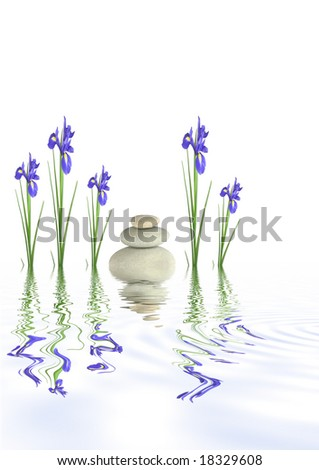 Zen abstract design of grey spa stones and blue iris flowers  with reflection over rippled water.