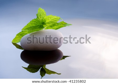 zen background, grass, mint, melissa Foto stock ©