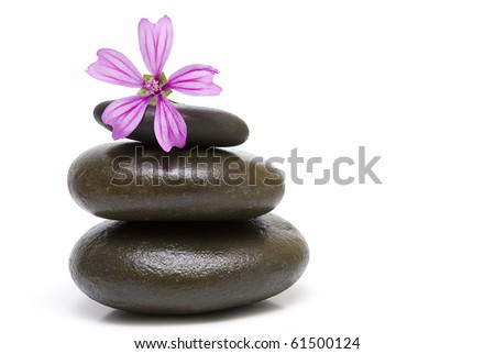 Zen balance with stones and flowers on a white background.