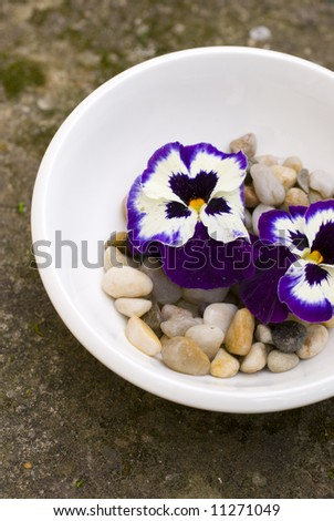 Zen decorative flowers, white bowl, romantic rock covered with moss and other natural decorative elements