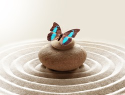 zen garden meditation stone background and butterfly with stones and circles in sand for relaxation balance and harmony spirituality or spa wellness.