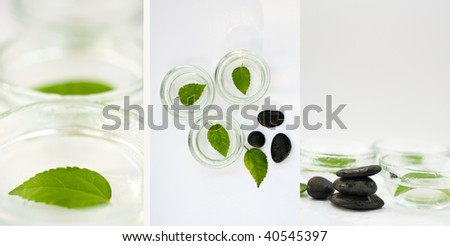 Zen-like SPA background in green, black and white