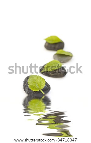 zen like spa with green leafs