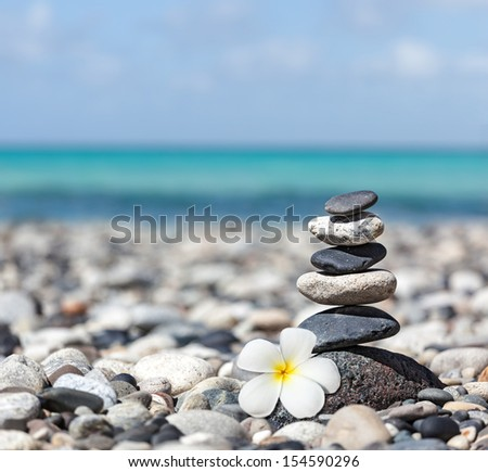 Zen meditation spa relaxation background balanced stones stack with frangipani plumeria flower close up on sea beach