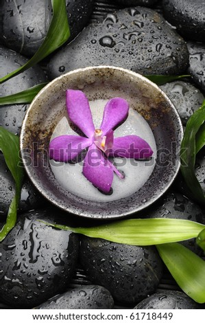 Zen Still Life -orchid flower floating in wooden bowl with green leaves on wet stones