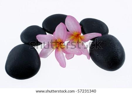 zen stone and frangipani flower