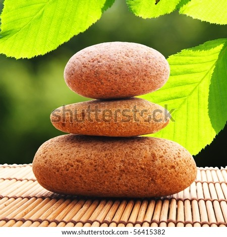 zen stone and green leaf showing spa or wellness concept