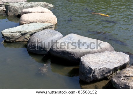 Zen stone path in a Japanese Garden across a tranquil pond with carps and turtles #85508152