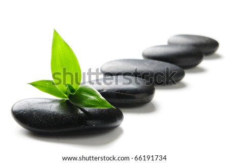 zen stones and green bamboo isolated on white