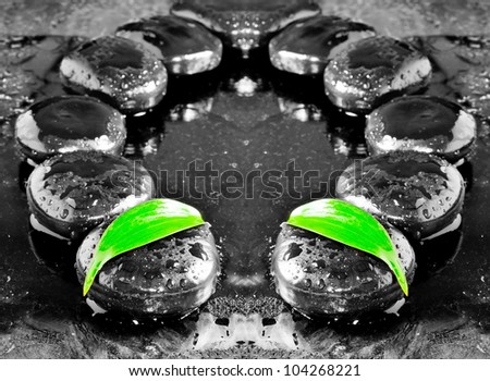 zen stones and green leaf with water drops