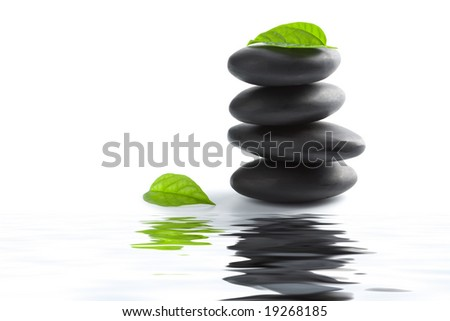 zen stones and leaves reflecting in water isolated
