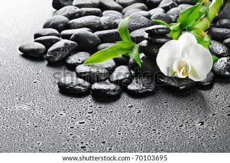 zen stones and  white orchid in the water