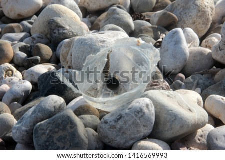 Zen stones on a pebble beach. Relaxation and tranquility atmosphere #1416569993