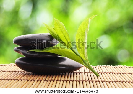 zen stones with green leaves and copyspace showing wellness