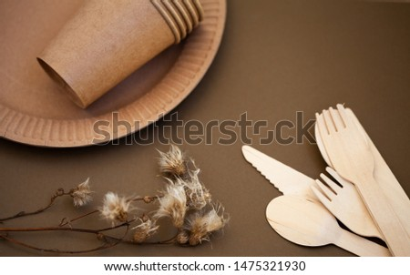 Zero waste, environmentally friendly, plastic without a background, disposable tableware, cardboard tableware, paper tableware, space for text, view from the top. Save the planet. #1475321930
