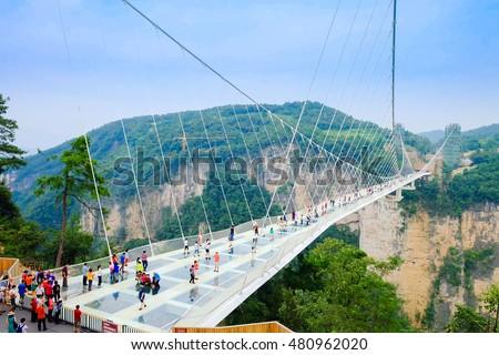 stock photo zhangjiajie china september zhangjiajie s national forest park the grand canyon of 480962020 - Каталог — Фотообои «Мосты»