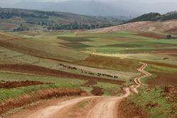 Zig zag road pass trough agriculture area of Inca people, Cusco, Peru