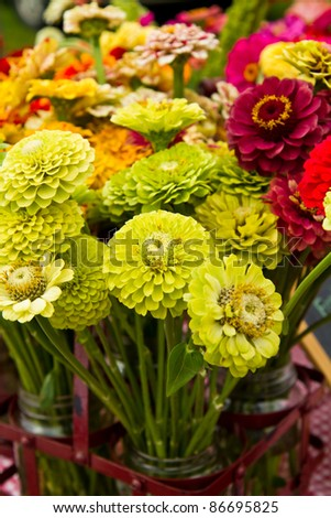 Zinnias for sale at a farmers market