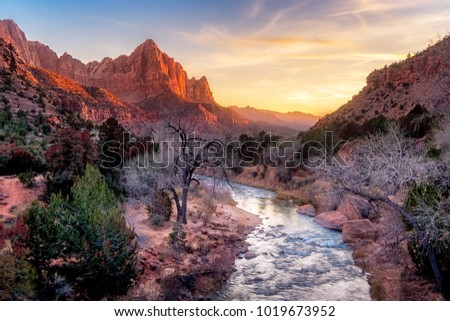 Zion national park late autumn landscape view with Watchman peak, Utah, USA #1019673952