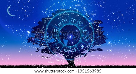 Zodiac signs inside of horoscope circle. Astrology in the sky, horoscopes concept Stock photo ©