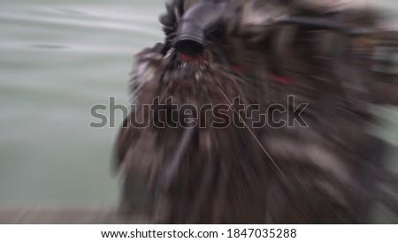 Zoomy blur picture of doff metallic car block engine ストックフォト ©