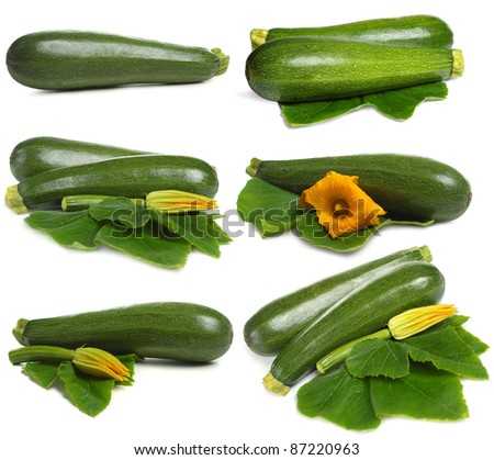 Zucchini vegetable set isolated on white background