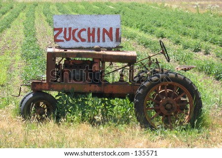 Zuchini Tractor - stock photo