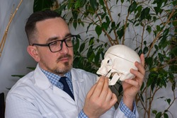 Zygomatic bone anatomy concept photo. Doctor, scientist, teacher or plastic surgeon points to the zygomatic bone using a portable pointer while holding an anatomical model of a human skull