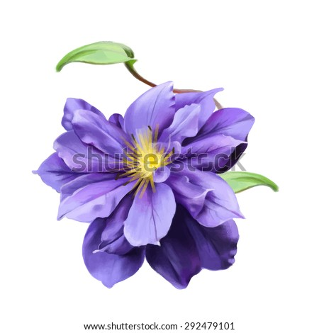 a beautiful purple flower