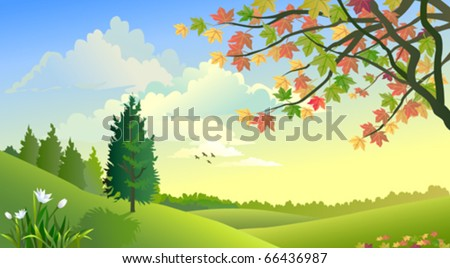 A beautiful rural summer landscape - stock vector