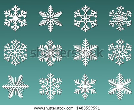 A collection of white snowflakes. Beautiful element for a Christmas banner, greeting card. Christmas ornament.