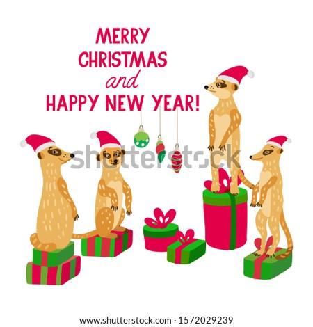 a happy meerkat family wearing