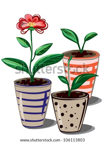 Abstract  composition of flower and pots isolated on white
