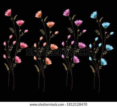 abstract   small flower buti  colorful flower bunch black background Zdjęcia stock ©