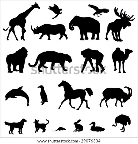 20 animal black silhouette