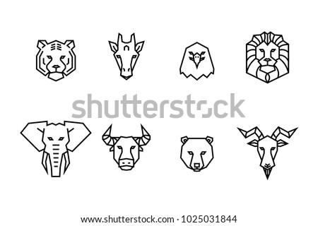 8 animal heads icons vector