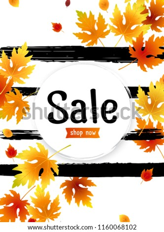 Autumn sale background layout with leaves for shopping sale, promo poster and frame leaflet, web banner. Vector illustration template. Fall offer ad design concept, fall sales advert announcement.