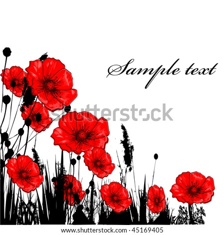 Background with grass ang red poppie isolated on white