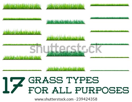 17 backgrounds of green grass