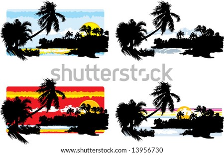 4 beach palm sky silhouette