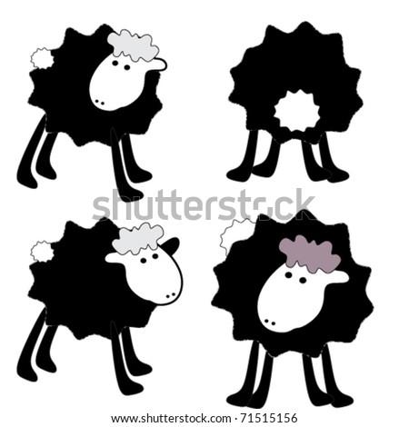 4 beautiful back sheep