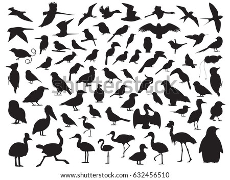 70 Bird Silhouette Vector Illustration