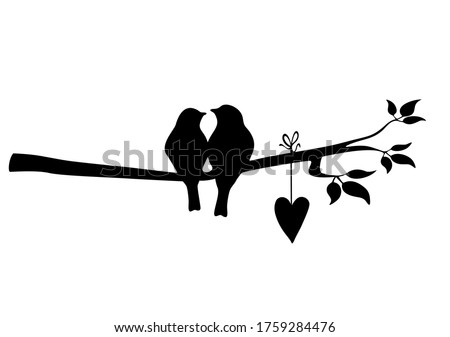 Birds at tree silhouettes vector image stock photo