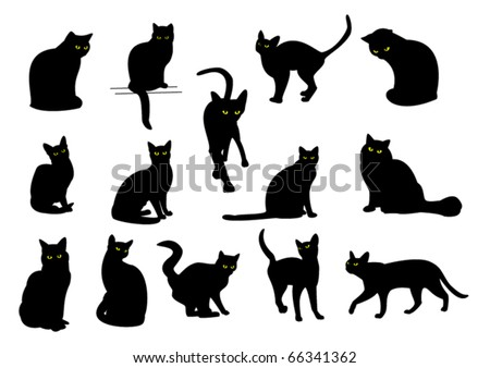 14 black cats with yellow eyes