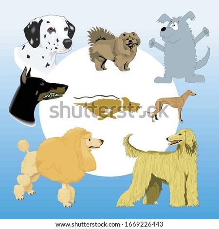 cartoon animal illustration