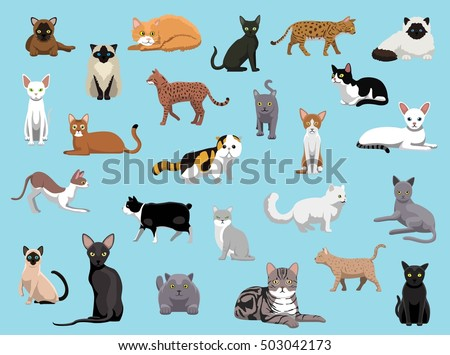25 cat breeds cartoon vector