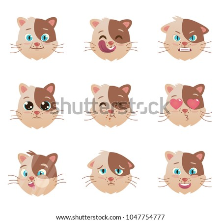 cats emotions character cats