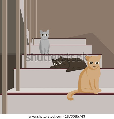 3 cats looking straight and
